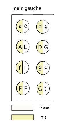 main gauche accordéon